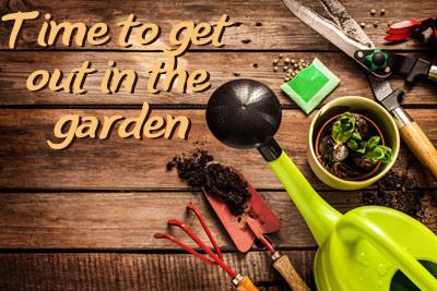 Latest news - in the garden