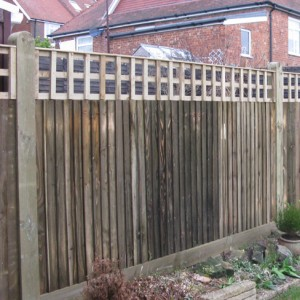 Tate Square Hole Bay Top Trellis installed on closeboard in garden