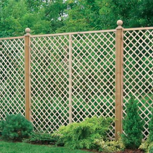 English Rose Trellis installed