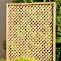Clementine Diamond Trellis Panel detail