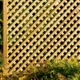 Clementine Diamond Trellis Panel close up