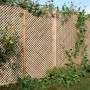 Clementine Diamond Trellis Panel installed in garden