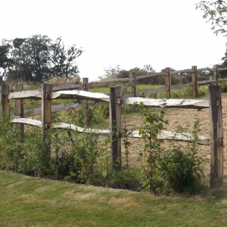 Installed Chestnut Post and 2 rail fence