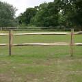 Chesnut fencing