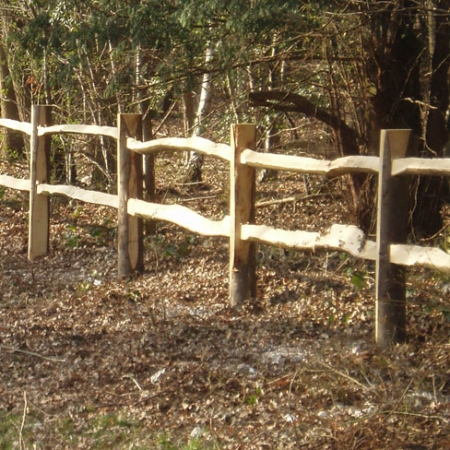 Example Cleft Chestnut Post and 2 rail