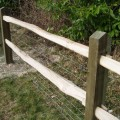 Softwood posts with 2 chestnut rails - close up