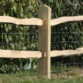 Softwood Post and Chestnut Rail - close up