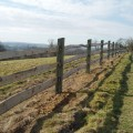 Back weathered softwood posts, mortised for 3 chestnut rails