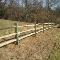 Back weathered softwood posts, 3 chestnut rails on bank