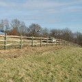 Rustic chestnut rails on softwood posts