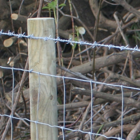 Barbed Wire in use, on fencing run paired with stock netting