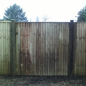 Installed Closeboard Panels in garden