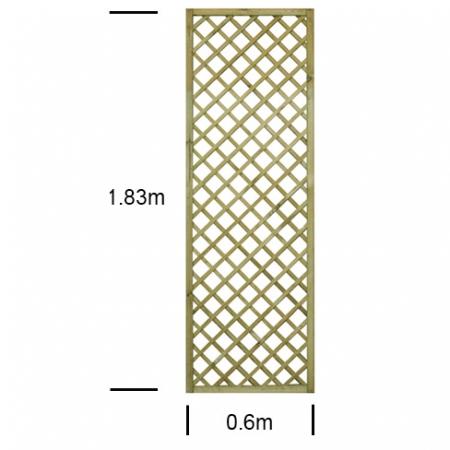 English Rose 2ft wide x 6ft high trellis panel