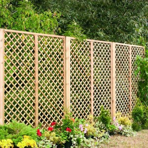 English Rose Trellis installed