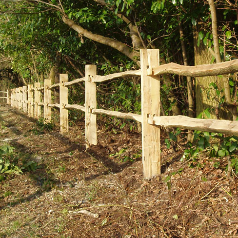 Softwood Post and 2 cleft chestnut rail fence run