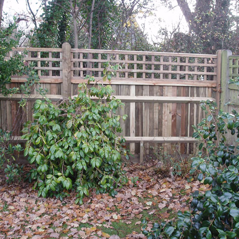 Closeboard Kit form with 450mm trellis installed