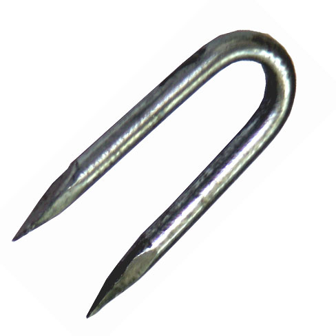 Galvanised fencing staple for attaching wire and netting securely