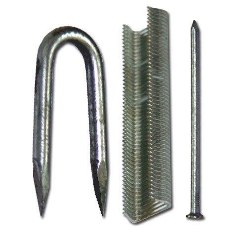 Nails, Staples & Clips