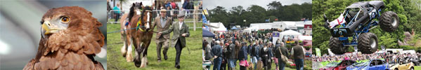 Whats on at the Heathfield show 2017