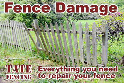 garden fence damage